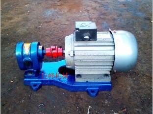 2CY系列齿轮泵,高压齿轮泵,增压齿轮泵,杂质齿轮泵,耐磨齿轮泵,燃油齿轮泵
