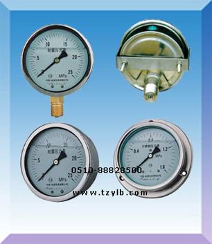 充油压力表量程精度