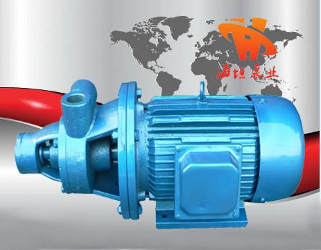 漩涡泵 铸铁单级旋涡泵1W型