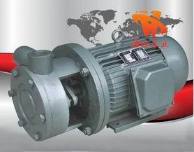 漩涡泵 1W系列直连式单级旋涡泵