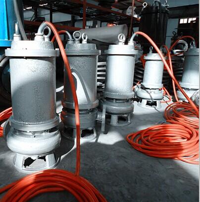 全不锈钢耐腐蚀排污泵 厂家直销各种规格