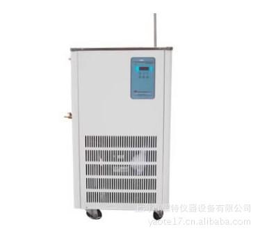 5L低温冷却液循环泵