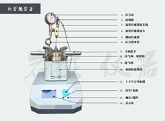 小型台式磁力搅拌智能微型高压反应釜