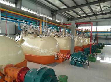 亚临界萃取印奇果油美藤果油加工项目生产线成套设备