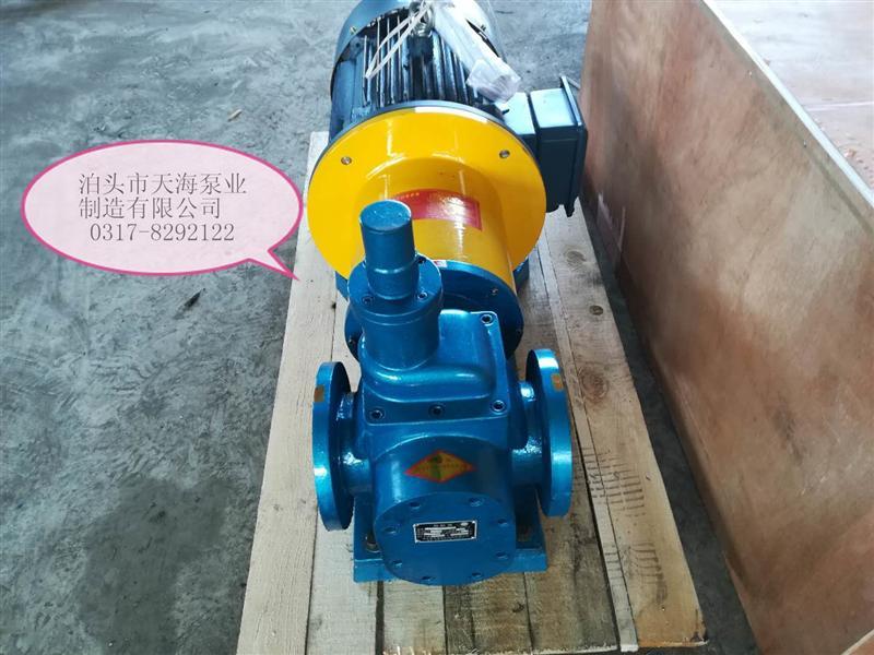 磁力驱动的YCB圆弧齿轮油泵