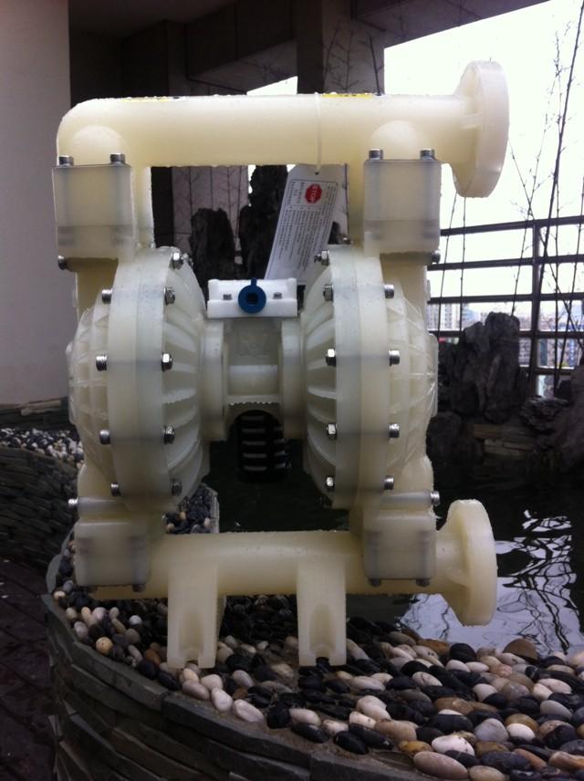 全塑氣動隔膜泵RGF2911.RGF2966.RGF2955