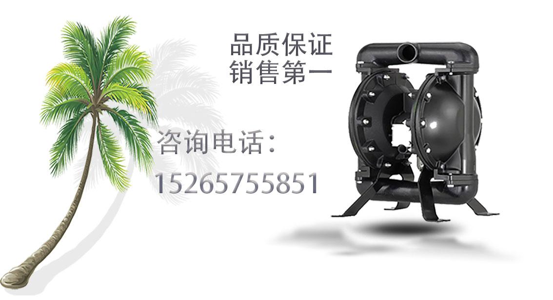 BQG100/0.3系列矿用气动隔膜泵 自吸式不堵塞