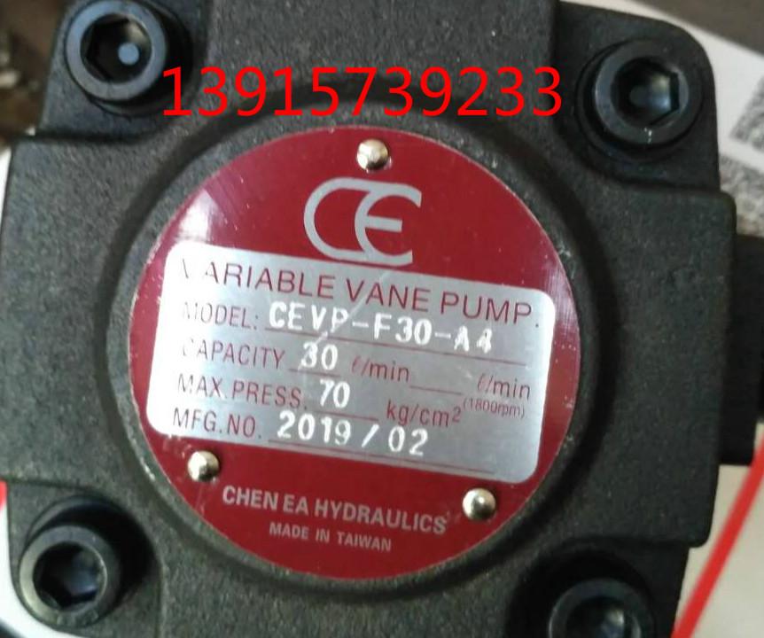 CEVP-F30-A4台湾CE油泵