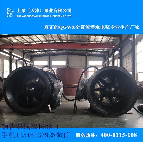 广东高压-防汛排涝贯流泵