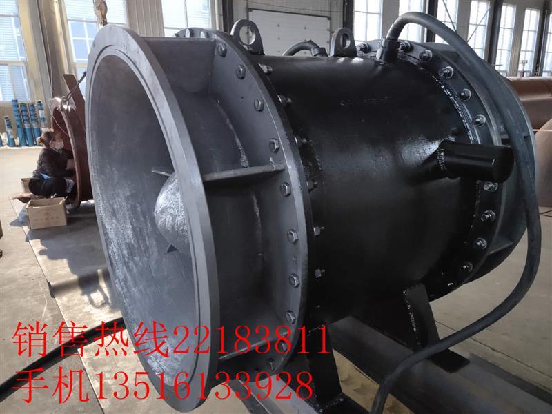 广西带保护装置的全贯流潜水电泵