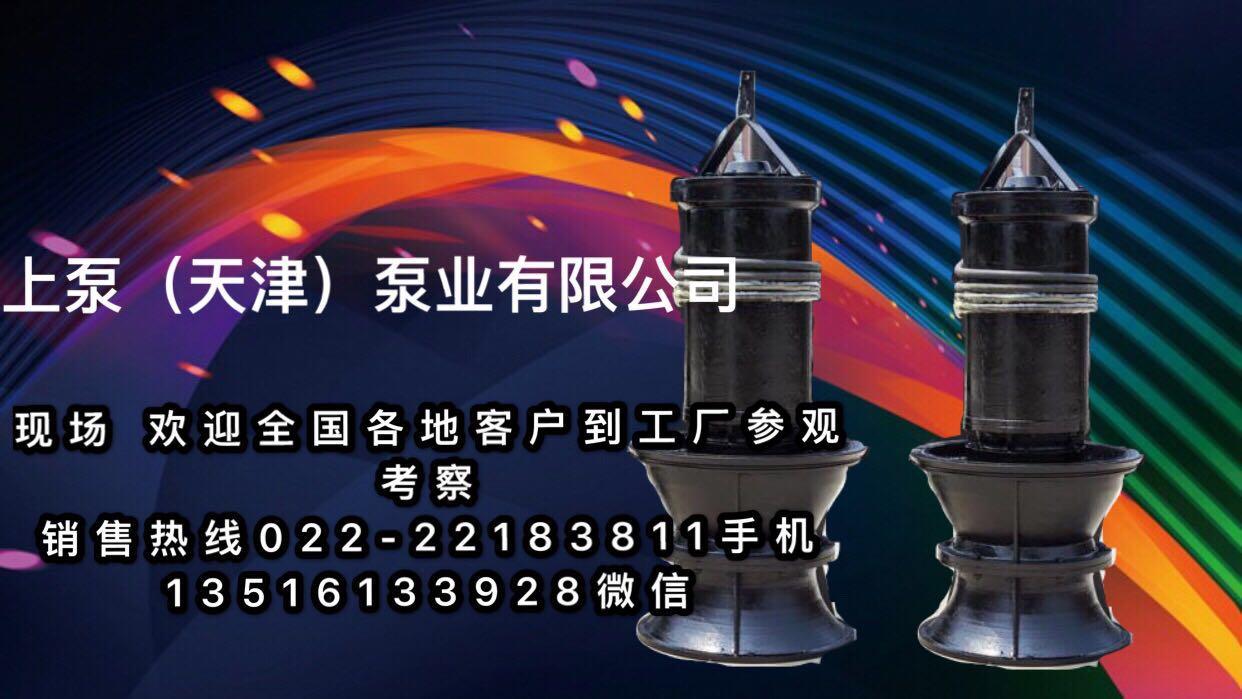 广西防汛排涝潜水轴流泵