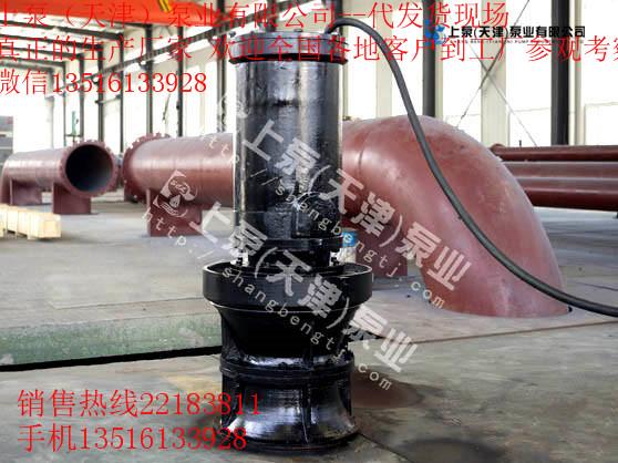 广西南宁叶片可调节式潜水轴流泵
