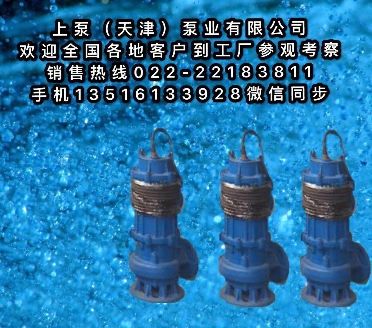 潜水排污泵600QW