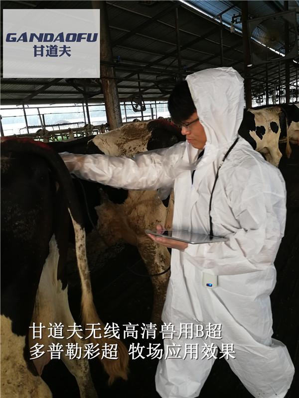 母牛B超機報價母牛B超彩超測孕儀多少錢