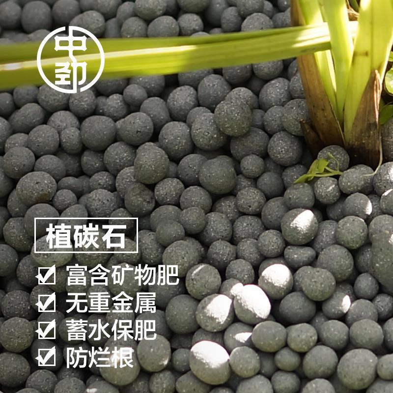 中劲植炭石(栽培基质颗粒 蓄水保肥铺面垫底 众成效植物新免烧陶粒)