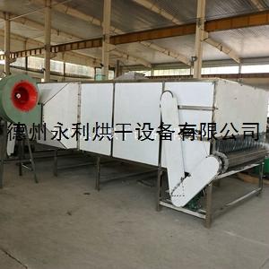 工廠定做帶式黑水虻烘干機 低溫熱風干燥設備