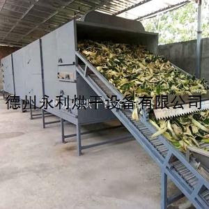 工廠定做果蔬烘干機 帶式干燥設備