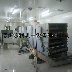 工廠定做蔓越莓烘干機 天然氣干燥設備