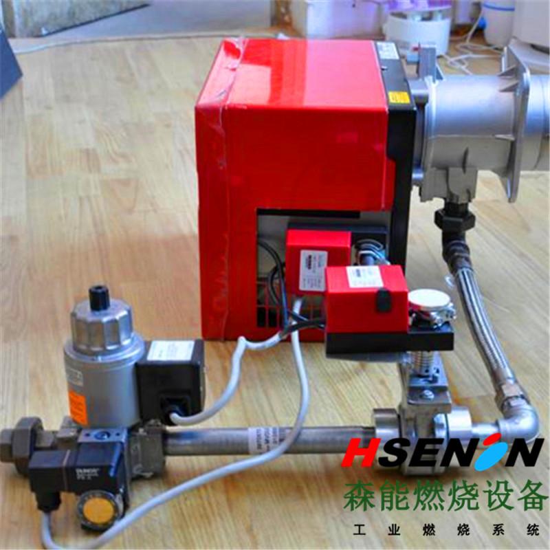 riello利雅路FS10,20比例式天然气燃烧器